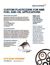 thumbnail of Custom Plasticizers for NBR Fuel and Oil Applications